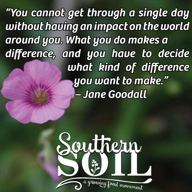Decide what difference Southern Soil